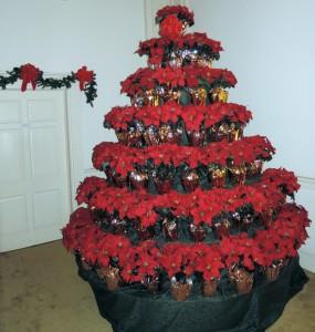 2015-12-14 Decorations @ Lucas Ave.